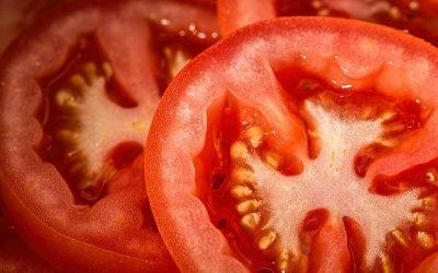 Boy v. Tomato